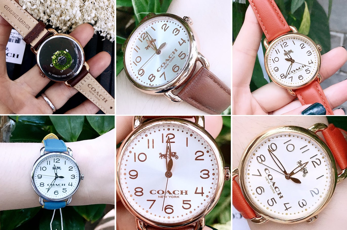Hinh-danh-thuc-te-dong-ho-Coach-Chalk-Sunray-1450268-ms-105600